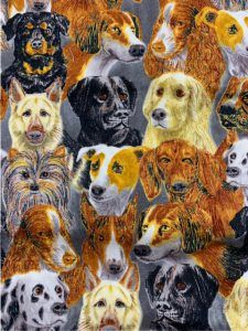 956 dogs